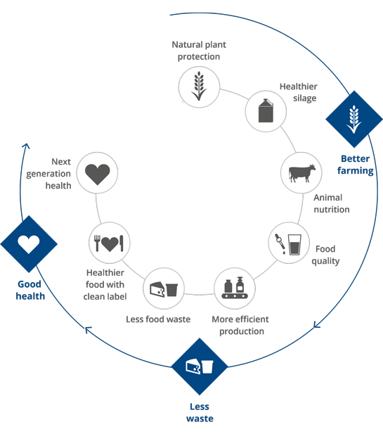 Fig 1 Chr. Hansen offers natural solutions at every step of the value chain from farm to fork. With its probiotic range, the Company contributes to several parts of animal protein delivery chain.