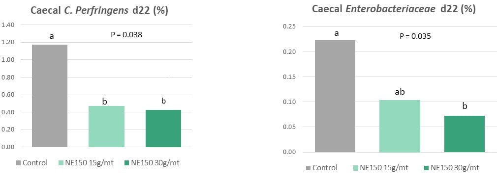 Figure 1: Reduction in caecal C. perfringens & Enterobacteriaceae 8 days post-challenge with Eimeria